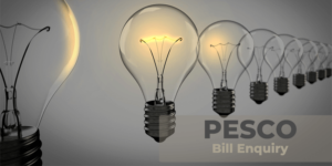 Guide to View,Print and Download Peshawar Electricity Bill Online